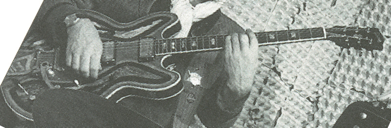 Gibson Flower Power